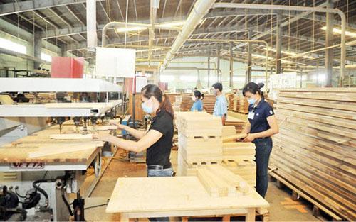 Ngành gỗ Việt Nam và cổ phiếu gỗ trước