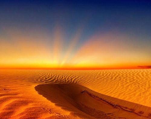 WEF: Đến năm 2070, một phần ba thế giới có thể sống ở những nơi nóng như sa mạc Sahara